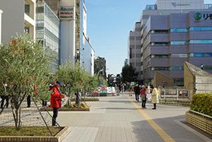 川崎 ロードマップ